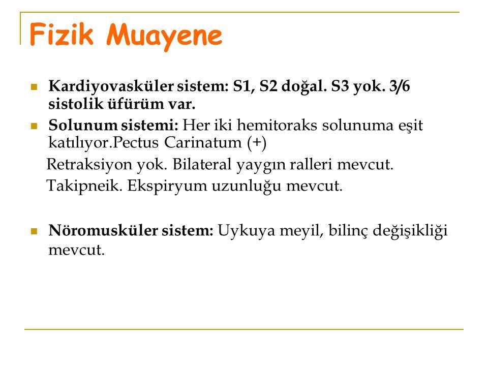 Fizik Muayene Kardiyovasküler sistem: S1, S2 doğal. S3 yok. 3/6 sistolik üfürüm var.