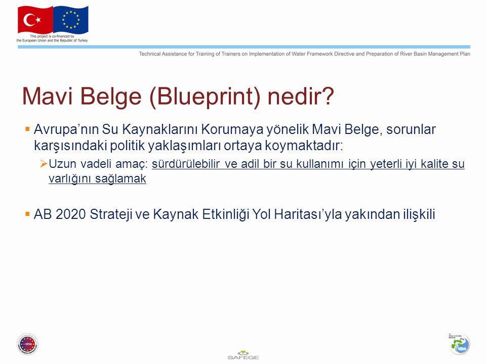 Mavi Belge (Blueprint) nedir