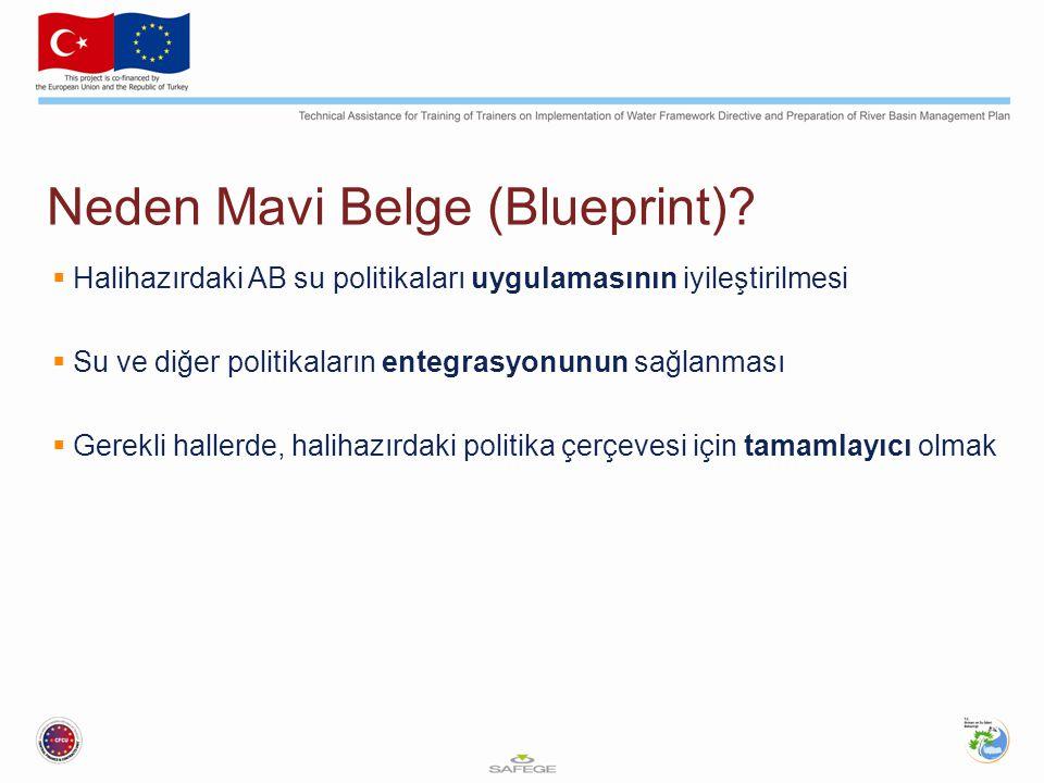 Neden Mavi Belge (Blueprint)