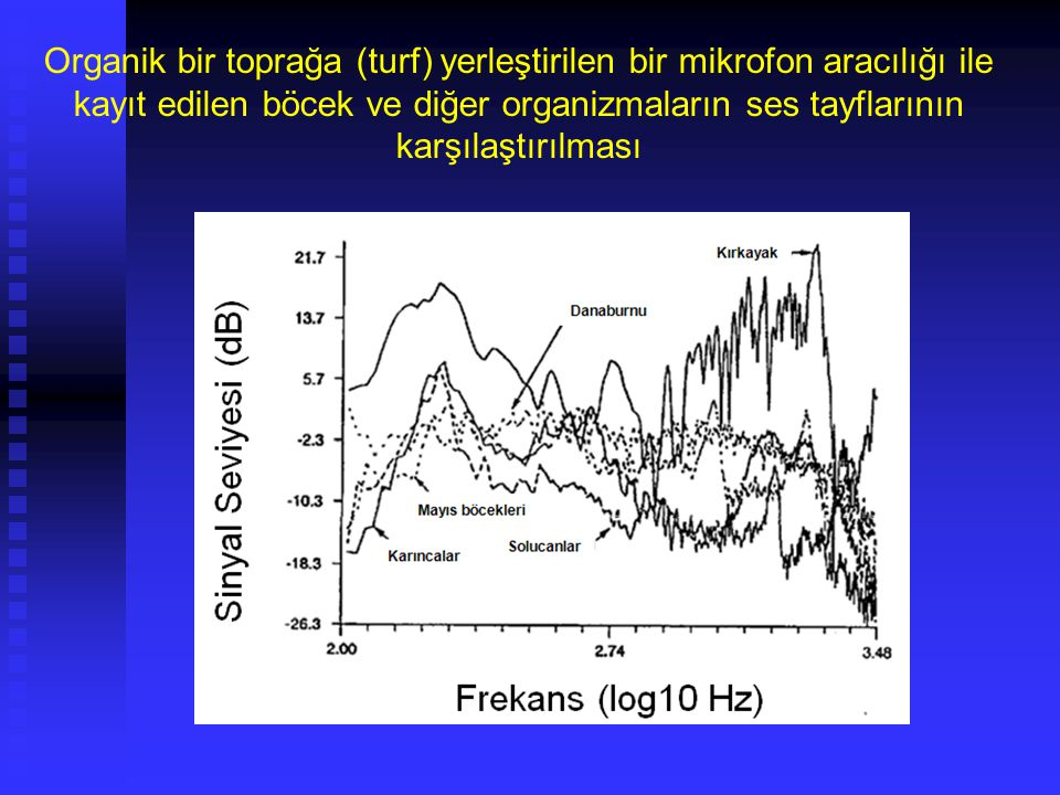 Organik bir toprağa (turf) yerleştirilen bir mikrofon aracılığı ile kayıt edilen böcek ve diğer organizmaların ses tayflarının karşılaştırılması