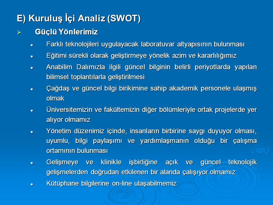 E) Kuruluş İçi Analiz (SWOT)