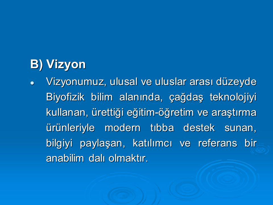 B) Vizyon