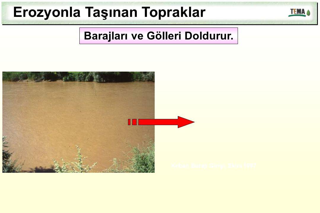 Barajları ve Gölleri Doldurur.