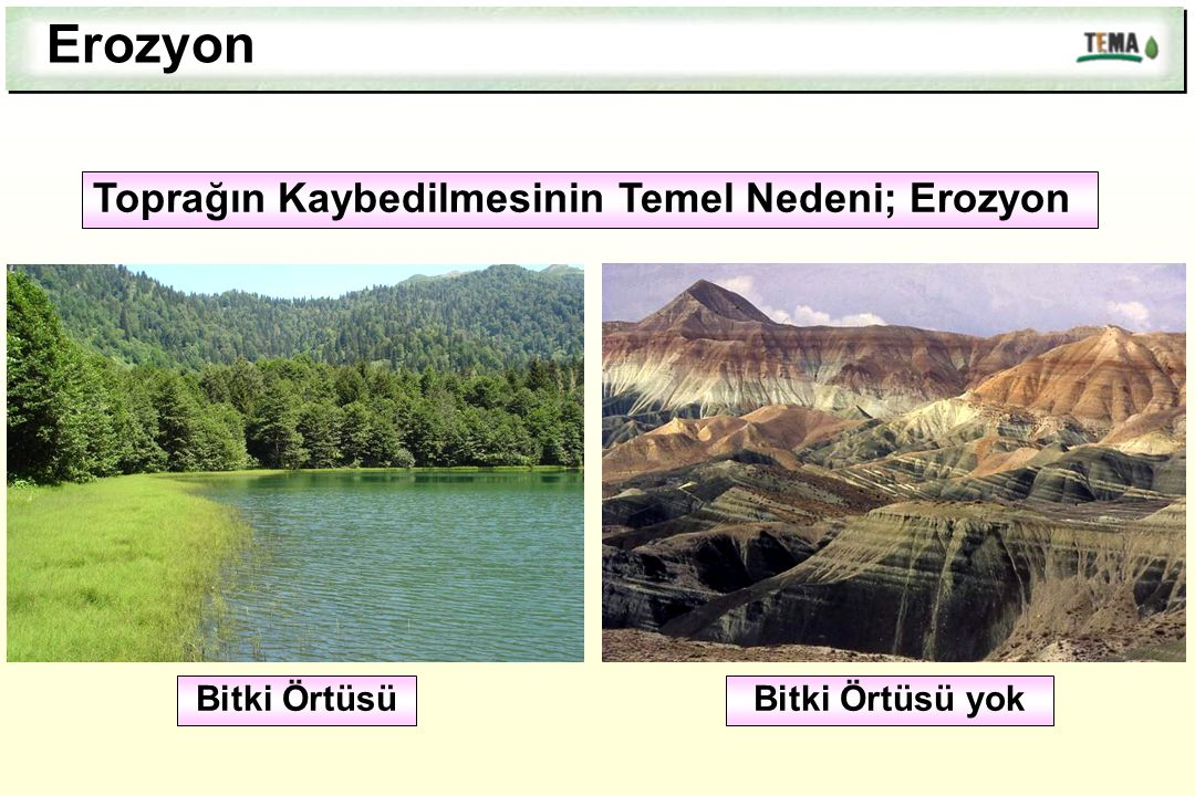 Erozyon Toprağın Kaybedilmesinin Temel Nedeni; Erozyon Bitki Örtüsü