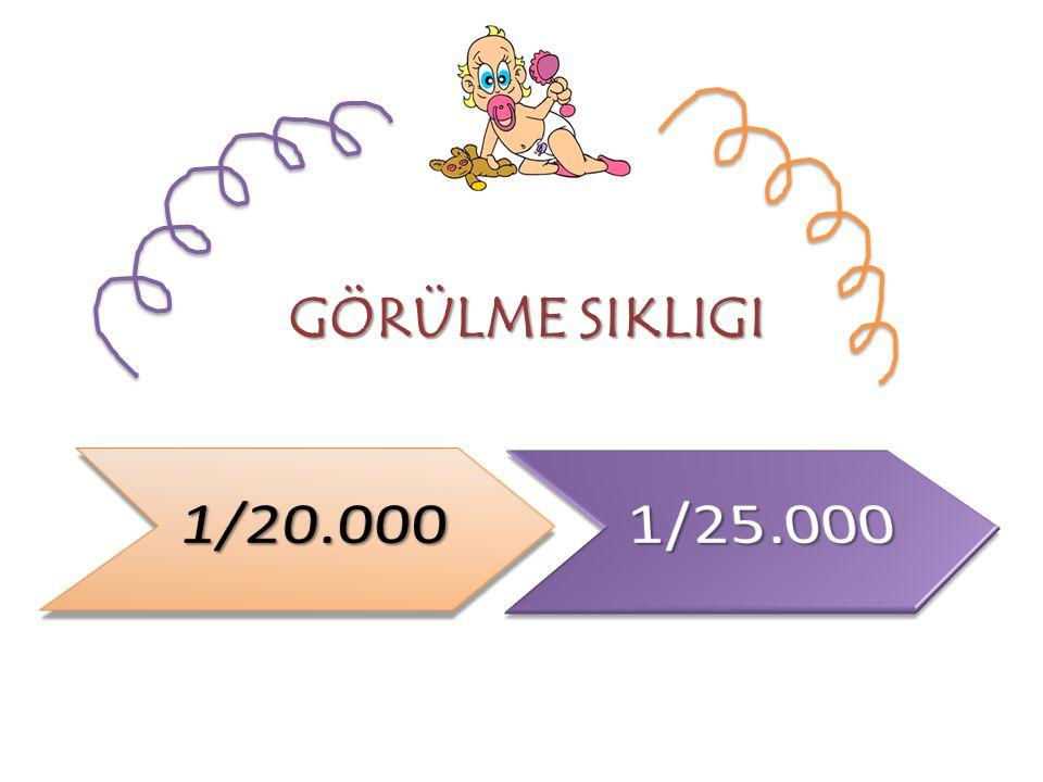GÖRÜLME SIKLIGI 1/20.000 1/25.000