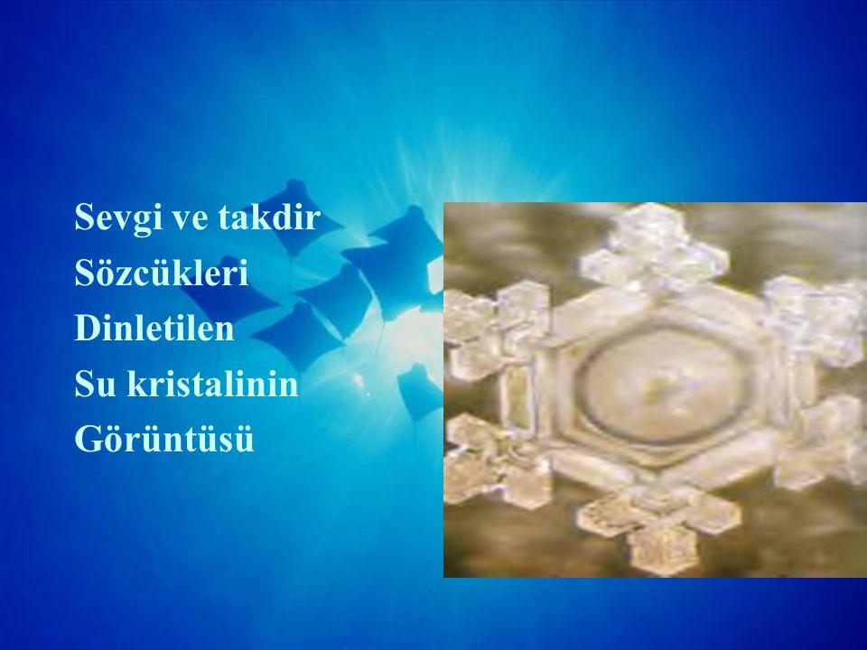 Sevgi ve takdir Sözcükleri Dinletilen Su kristalinin Görüntüsü