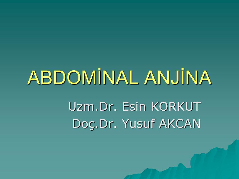 Uzm.Dr. Esin KORKUT Doç.Dr. Yusuf AKCAN