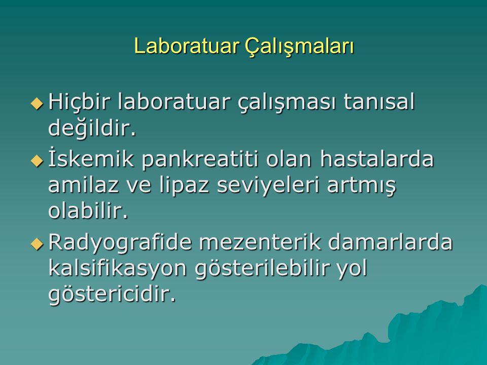 Laboratuar Çalışmaları