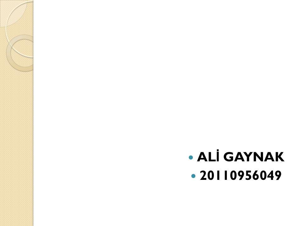 ALİ GAYNAK 20110956049