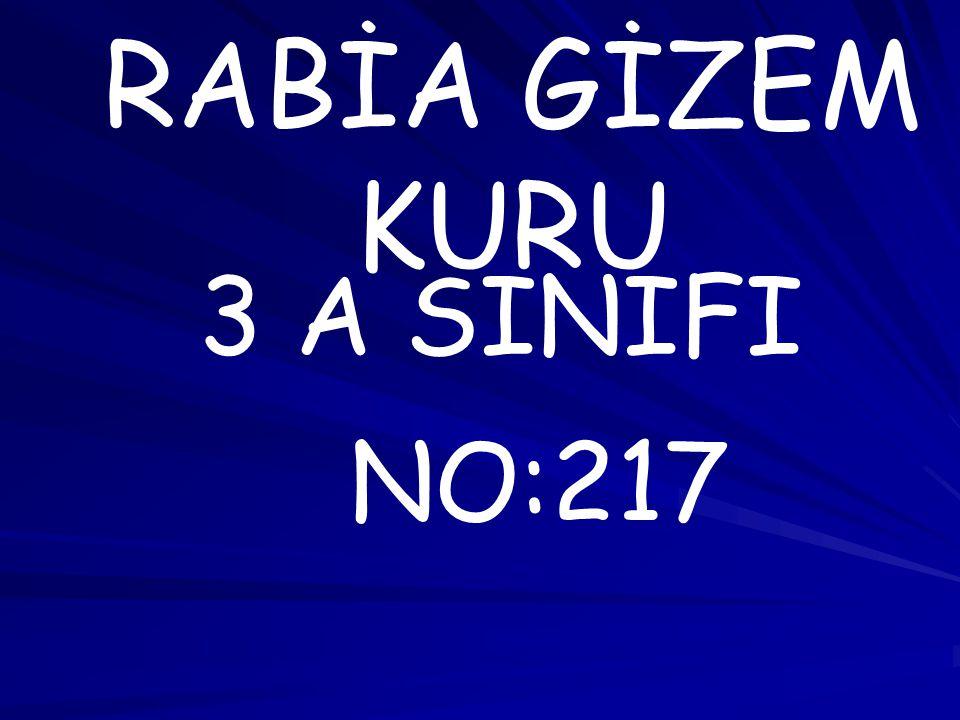 RABİA GİZEM KURU 3 A SINIFI NO:217