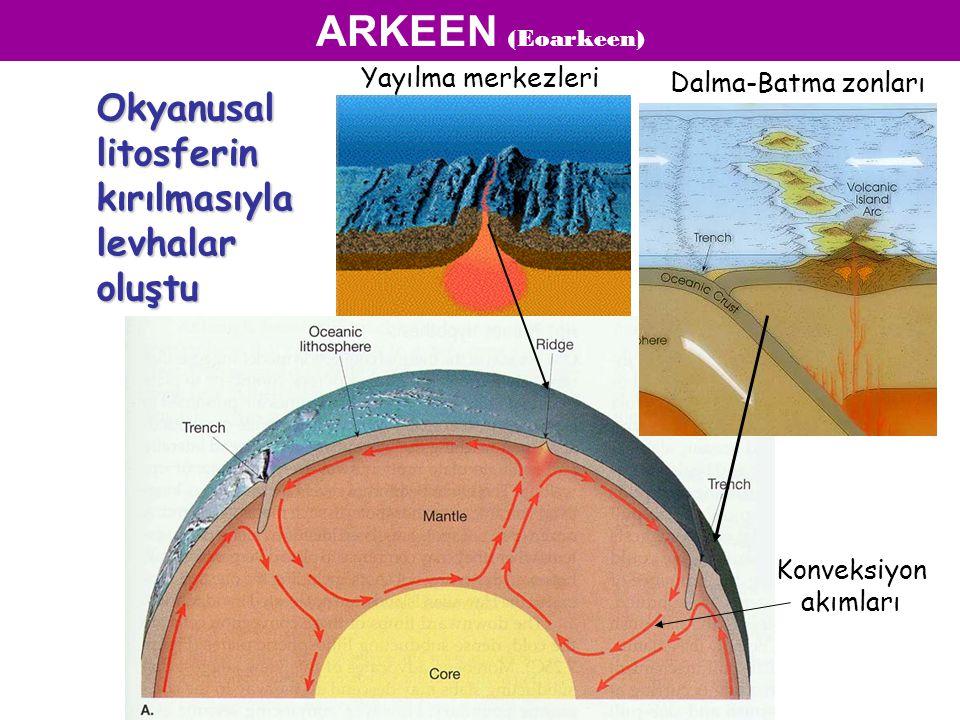 ARKEEN (Eoarkeen) Okyanusal litosferin kırılmasıyla levhalar oluştu