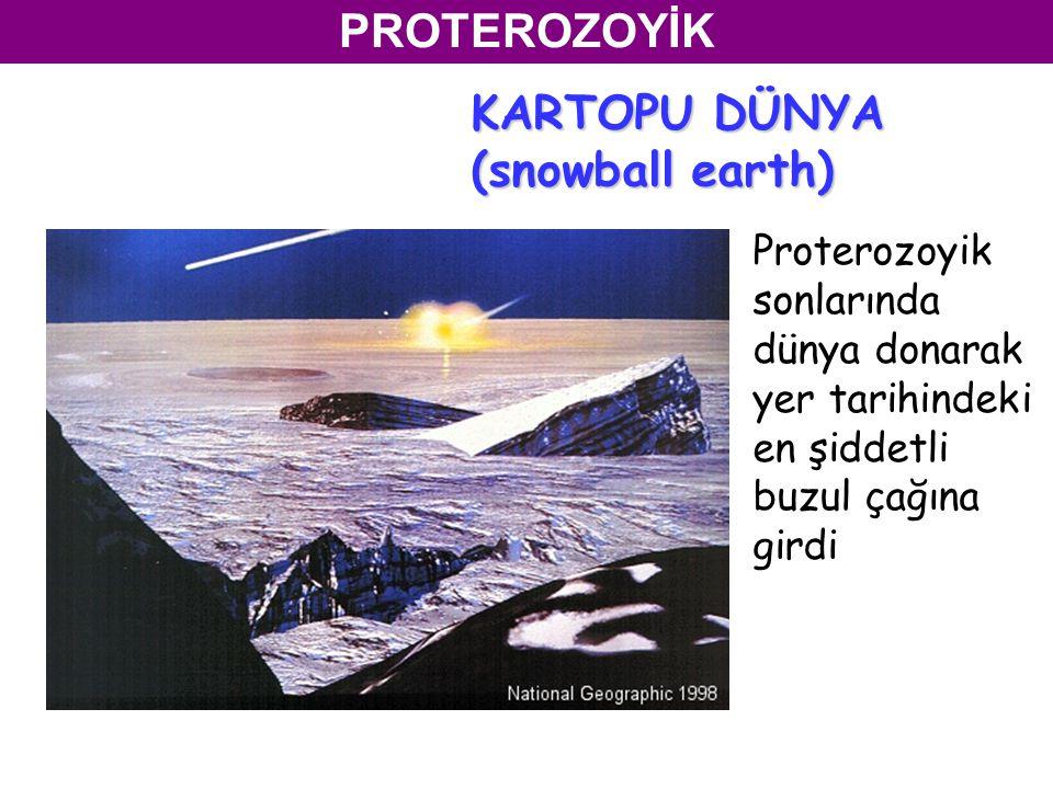 KARTOPU DÜNYA (snowball earth)