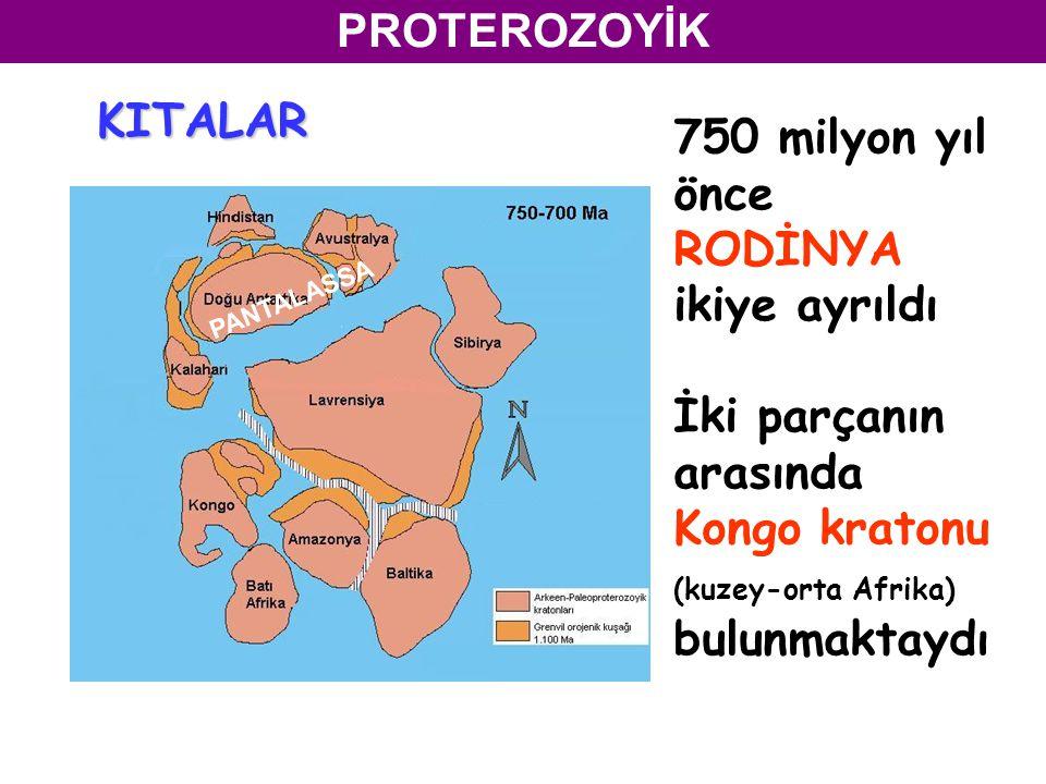 750 milyon yıl önce RODİNYA