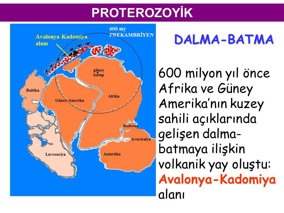 PROTEROZOYİK DALMA-BATMA. 600 milyon yıl önce.