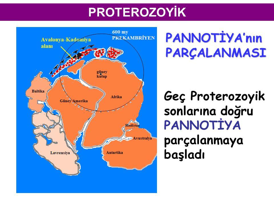 PROTEROZOYİK PANNOTİYA'nın. PARÇALANMASI.