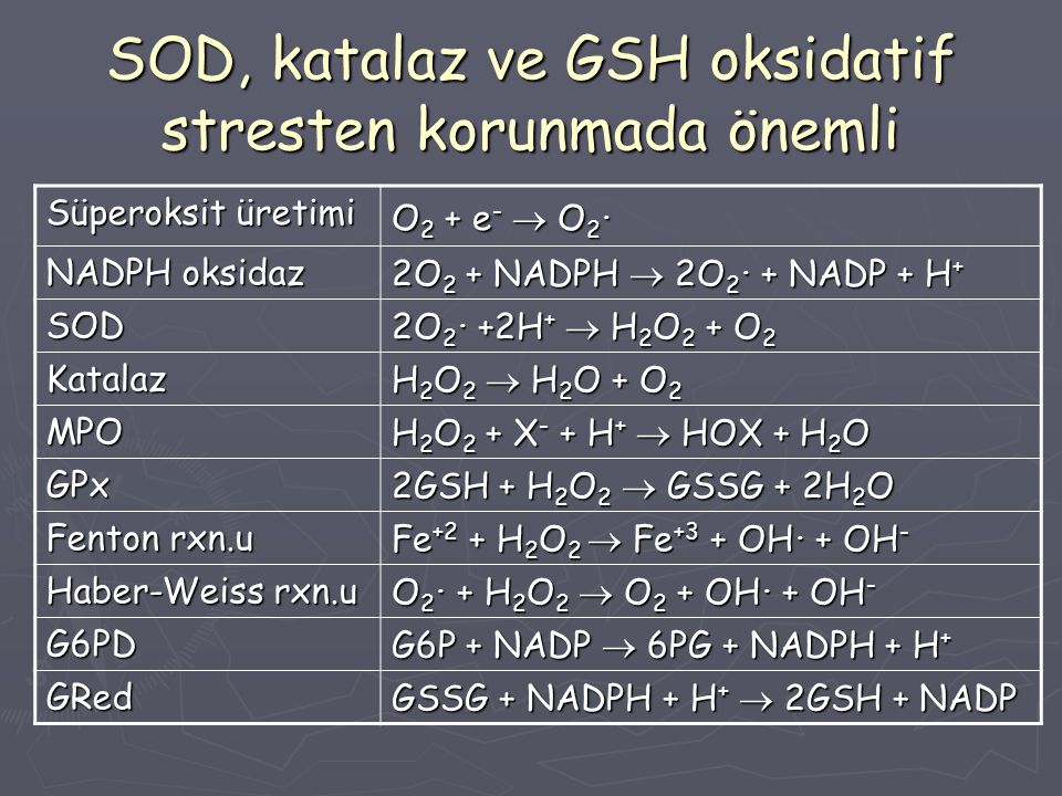 SOD, katalaz ve GSH oksidatif stresten korunmada önemli