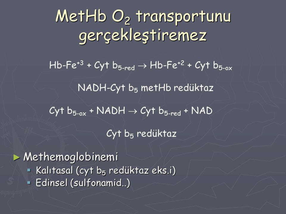 MetHb O2 transportunu gerçekleştiremez