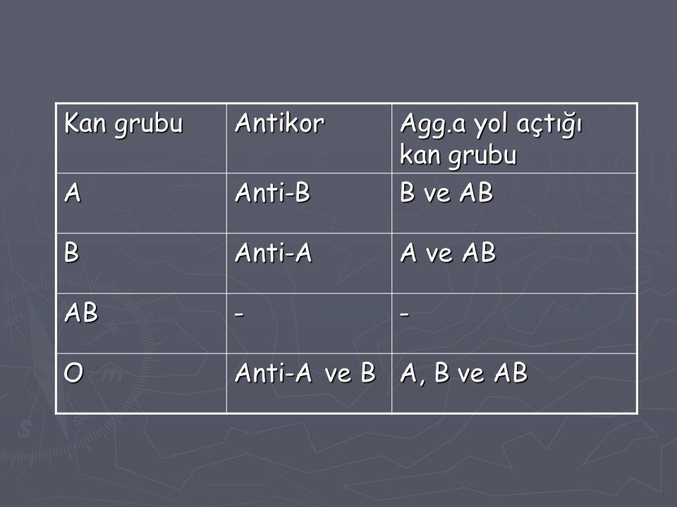 Kan grubu Antikor. Agg.a yol açtığı kan grubu. A. Anti-B. B ve AB. B. Anti-A. A ve AB. AB. -