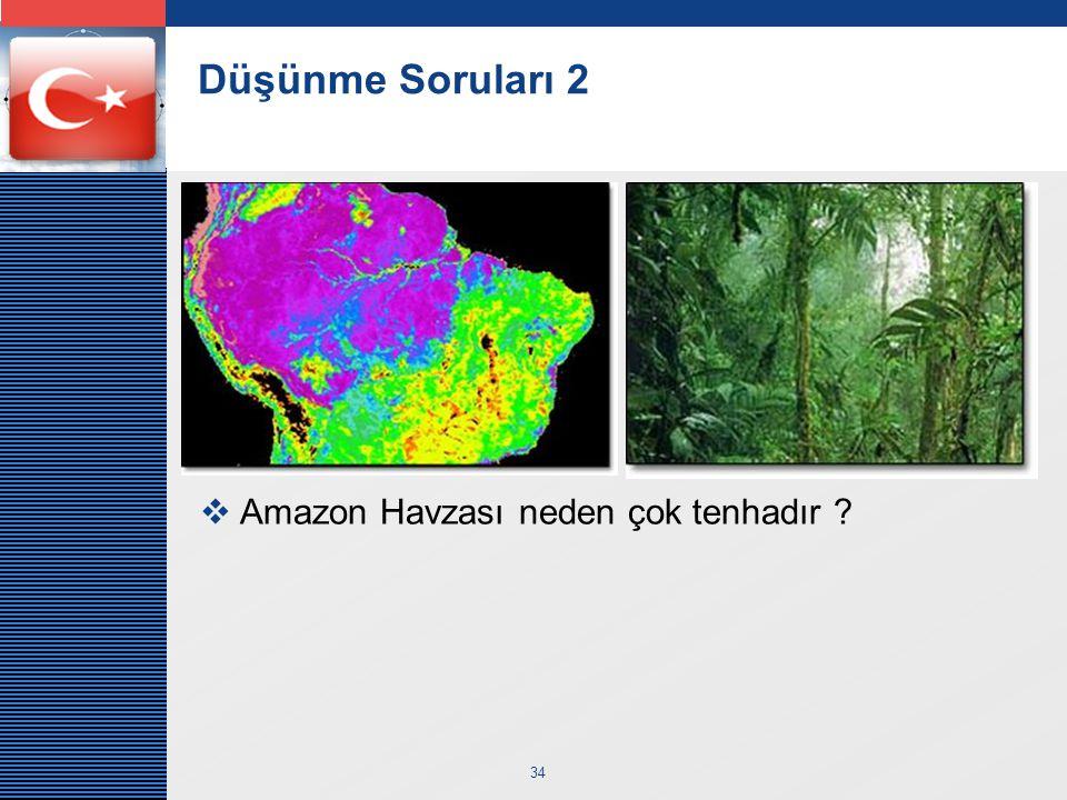 Düşünme Soruları 2 Amazon Havzası neden çok tenhadır