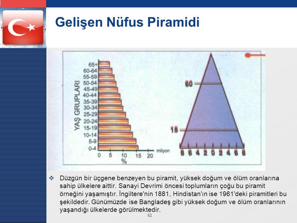 Gelişen Nüfus Piramidi