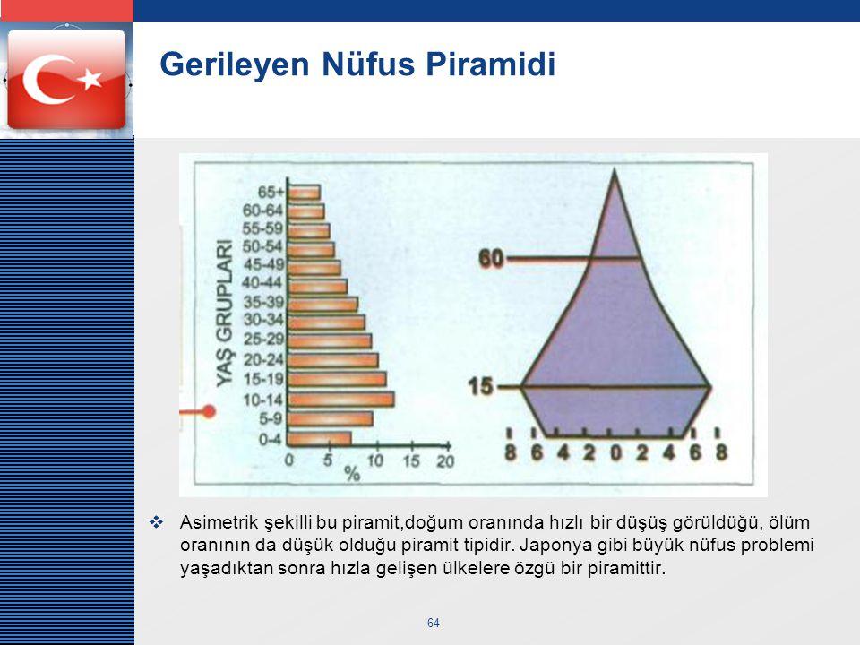 Gerileyen Nüfus Piramidi