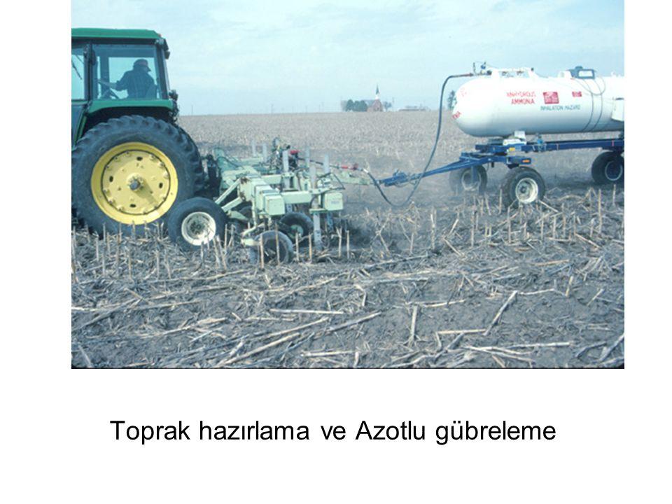 Toprak hazırlama ve Azotlu gübreleme