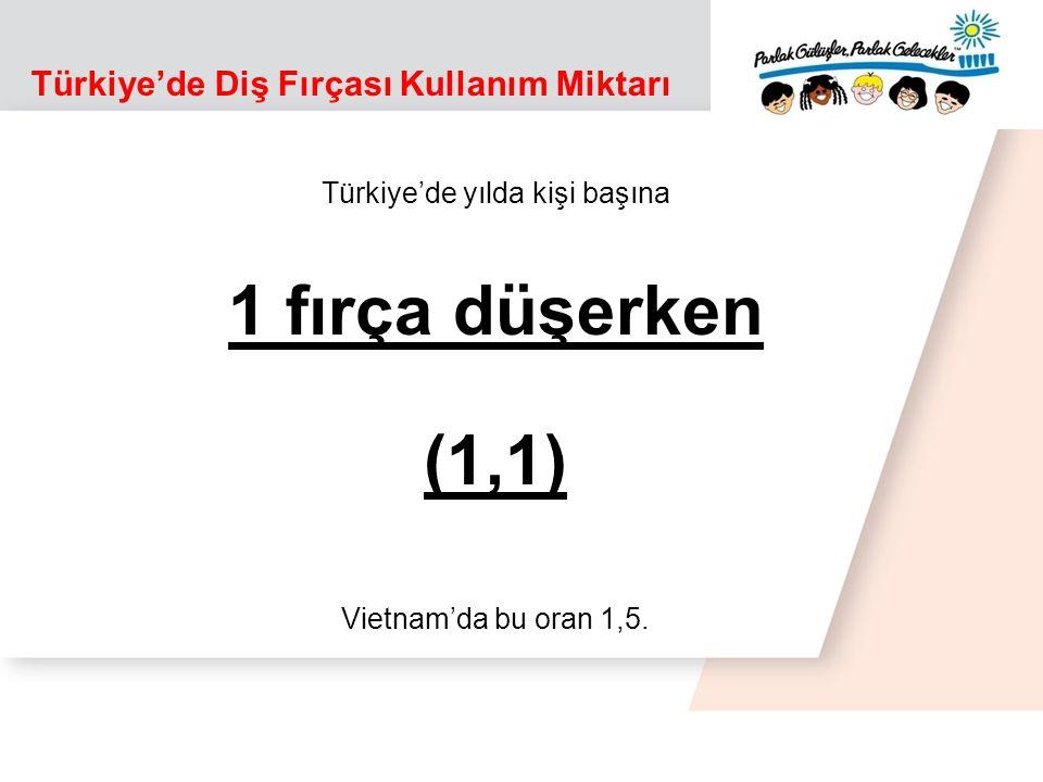 Türkiye'de Diş Fırçası Kullanım Miktarı