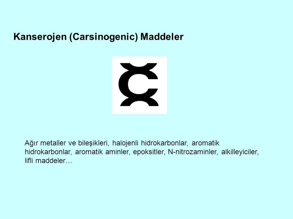 Kanserojen (Carsinogenic) Maddeler