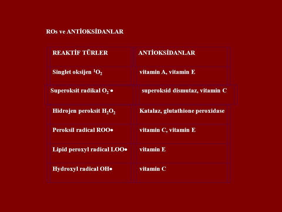 ROs ve ANTİOKSİDANLAR REAKTİF TÜRLER. ANTİOKSİDANLAR. Singlet oksijen 1O2. vitamin A, vitamin E.