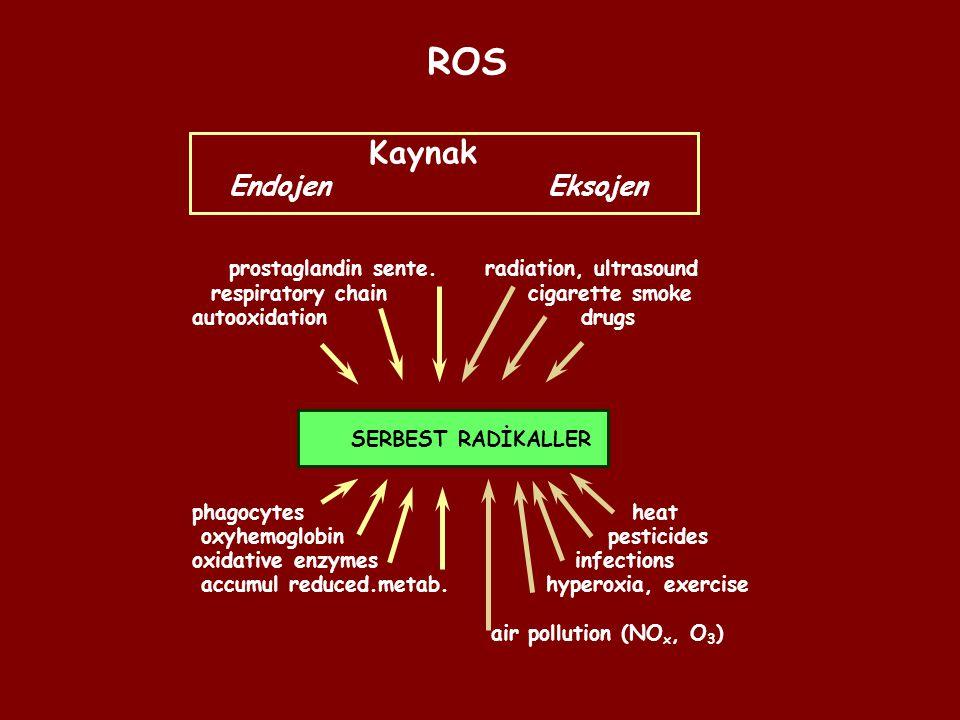 ROS Kaynak Endojen Eksojen prostaglandin sente. radiation, ultrasound