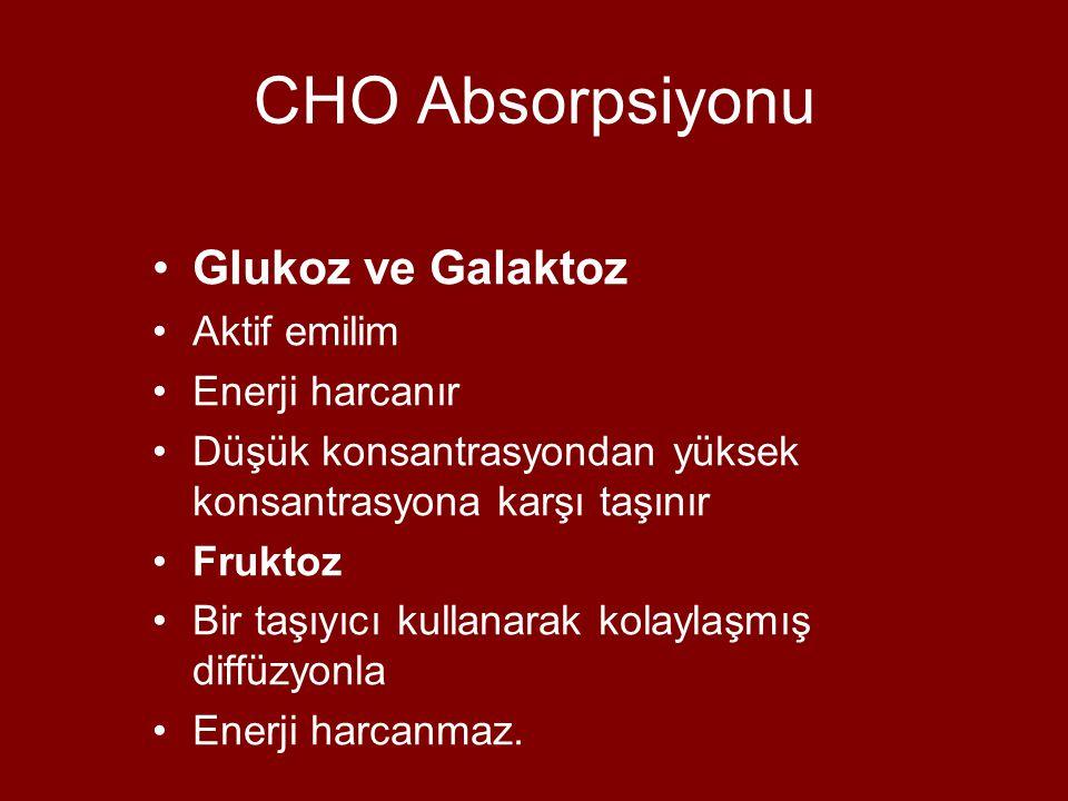 CHO Absorpsiyonu Glukoz ve Galaktoz Aktif emilim Enerji harcanır