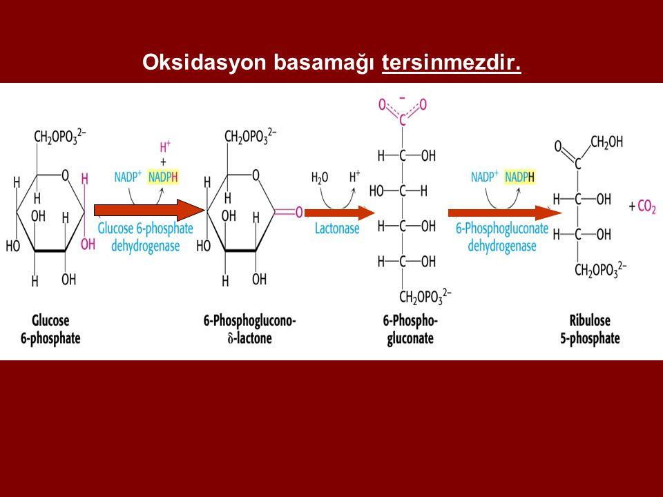 Oksidasyon basamağı tersinmezdir.