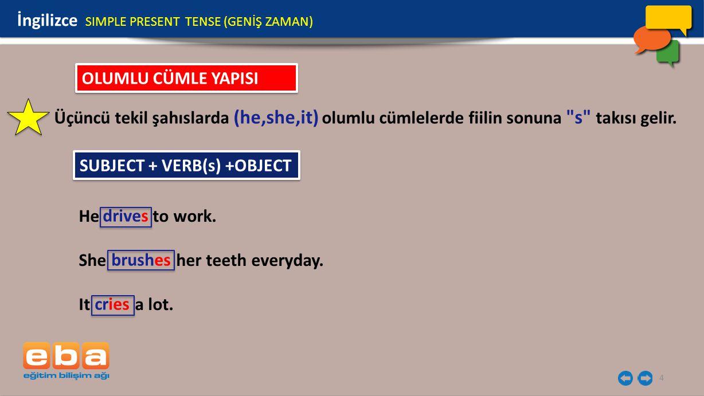 İngilizce SIMPLE PRESENT TENSE (GENİŞ ZAMAN)