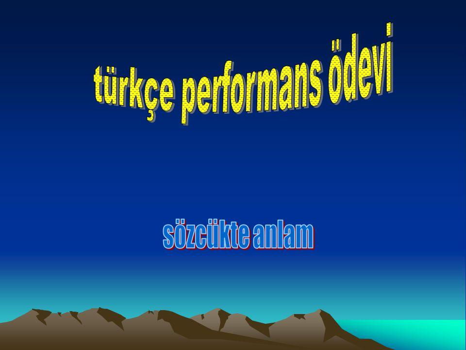 türkçe performans ödevi