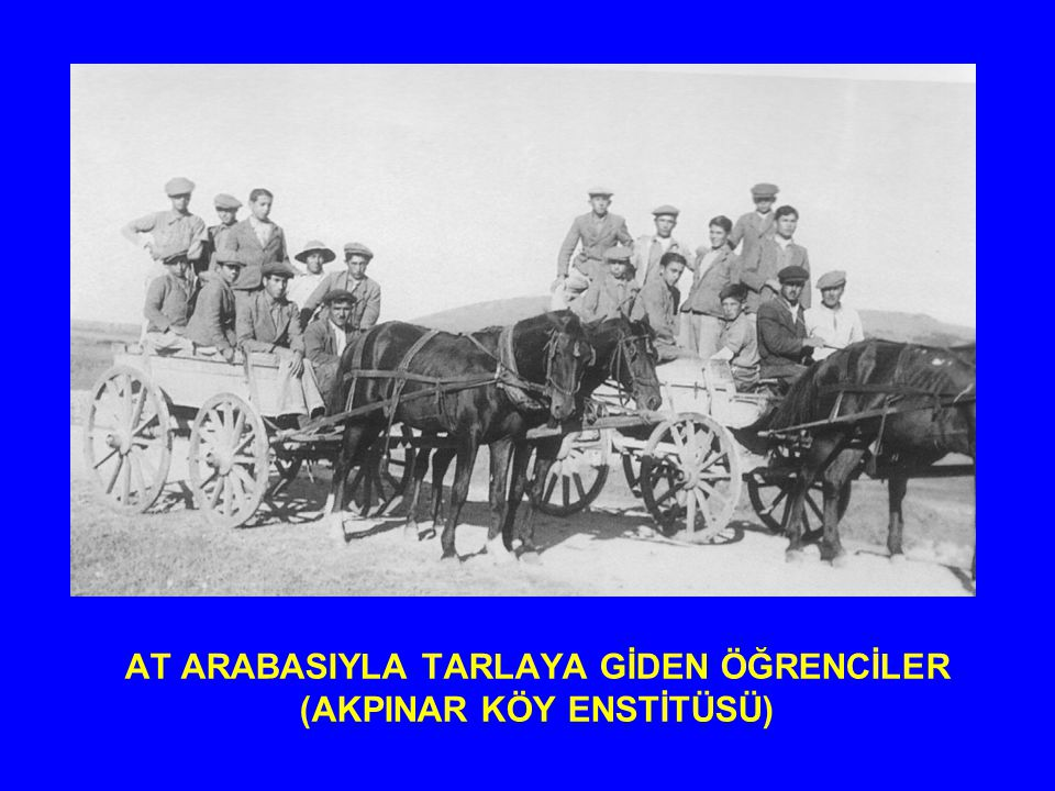 AT ARABASIYLA TARLAYA GİDEN ÖĞRENCİLER (AKPINAR KÖY ENSTİTÜSÜ)