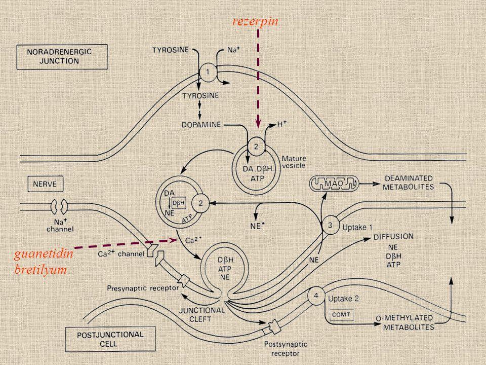rezerpin guanetidin bretilyum