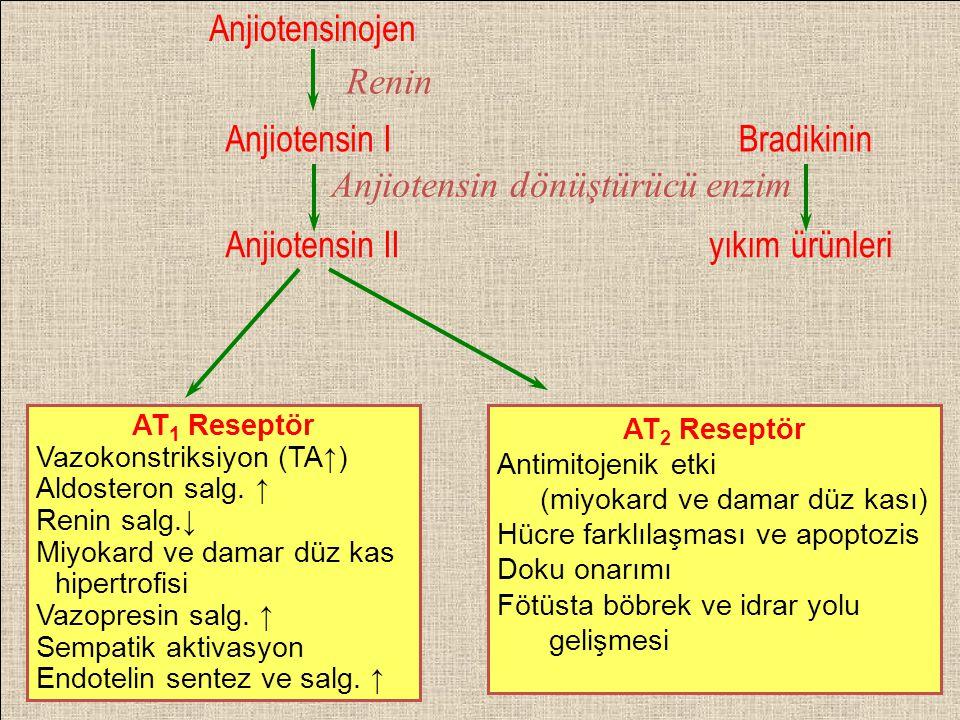 Anjiotensin dönüştürücü enzim