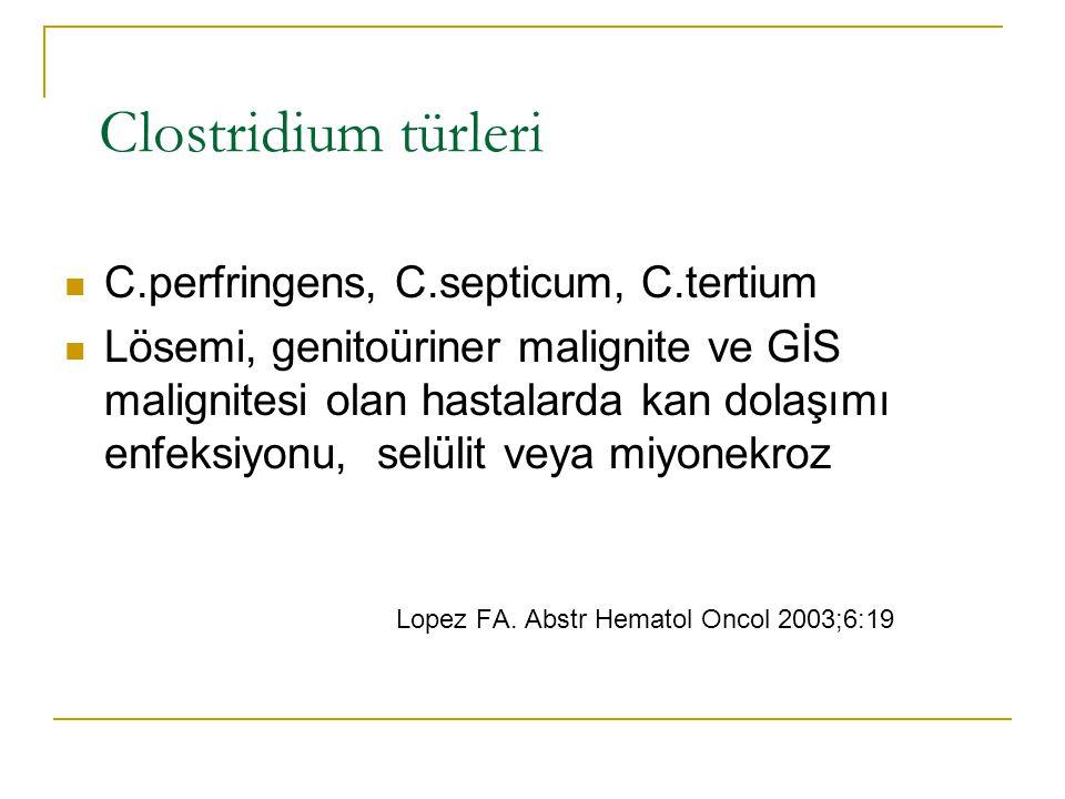 Clostridium türleri C.perfringens, C.septicum, C.tertium