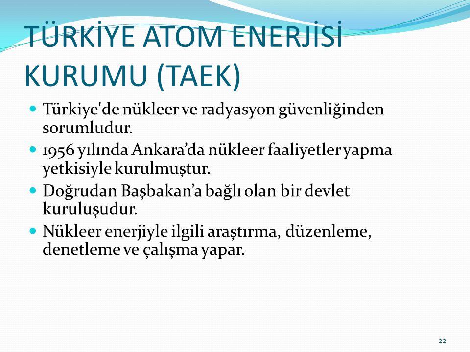 TÜRKİYE ATOM ENERJİSİ KURUMU (TAEK)