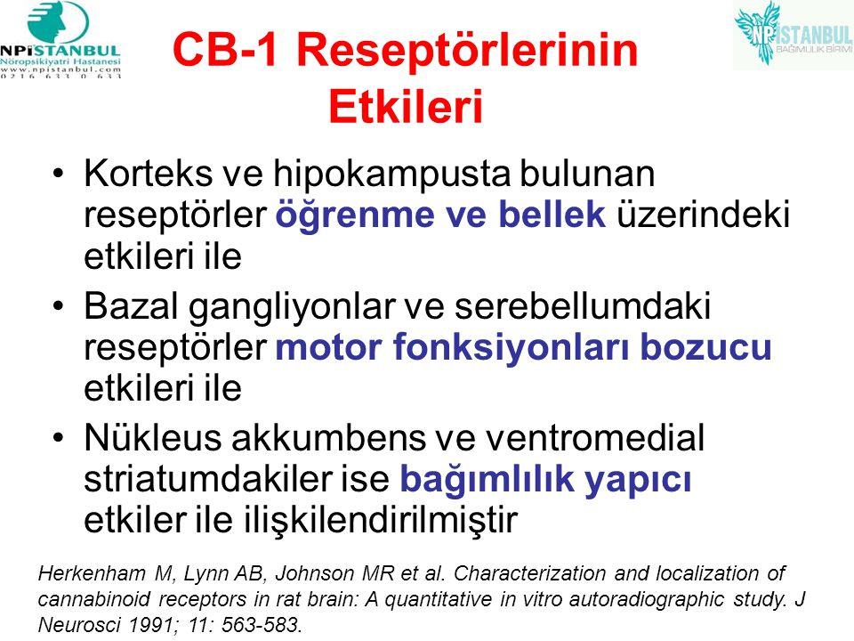 CB-1 Reseptörlerinin Etkileri
