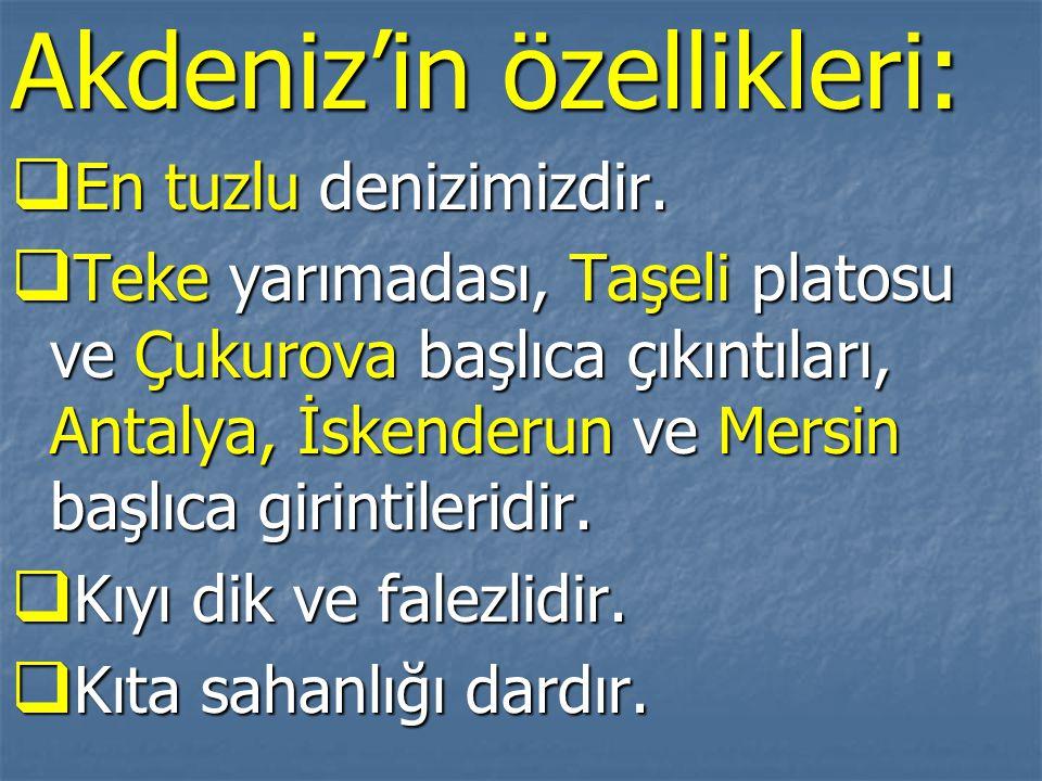 Akdeniz'in özellikleri: