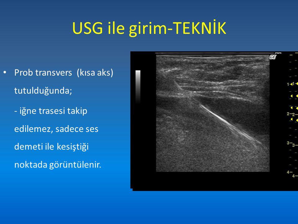 USG ile girim-TEKNİK Prob transvers (kısa aks) tutulduğunda;