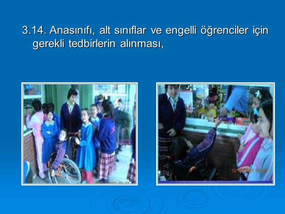 3.14. Anasınıfı, alt sınıflar ve engelli öğrenciler için gerekli tedbirlerin alınması,