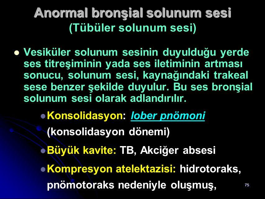 Anormal bronşial solunum sesi (Tübüler solunum sesi)