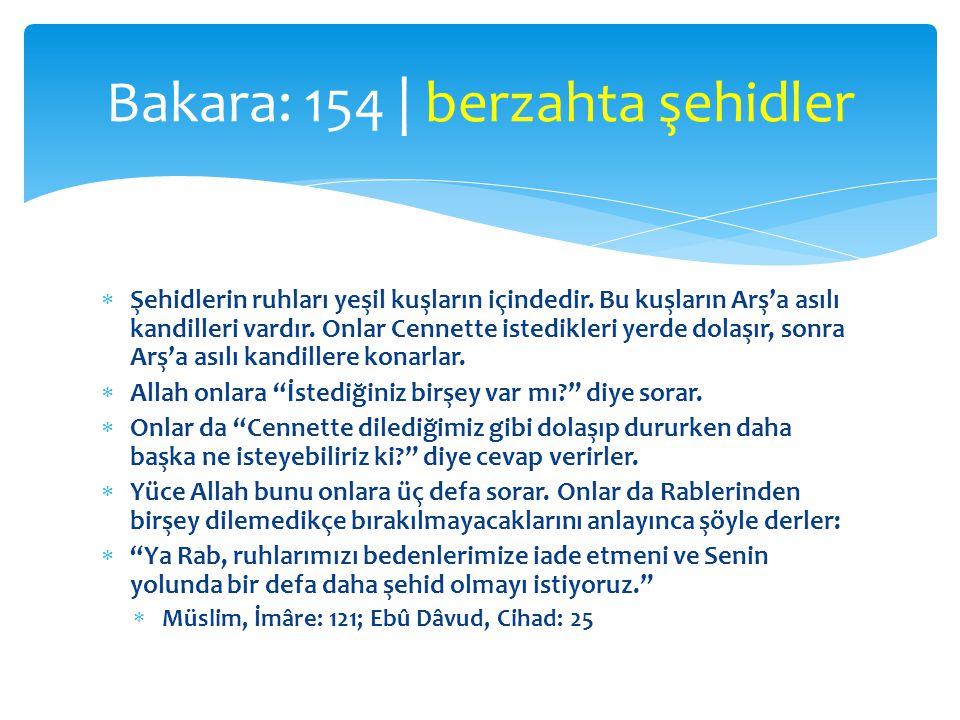 Bakara: 154 | berzahta şehidler