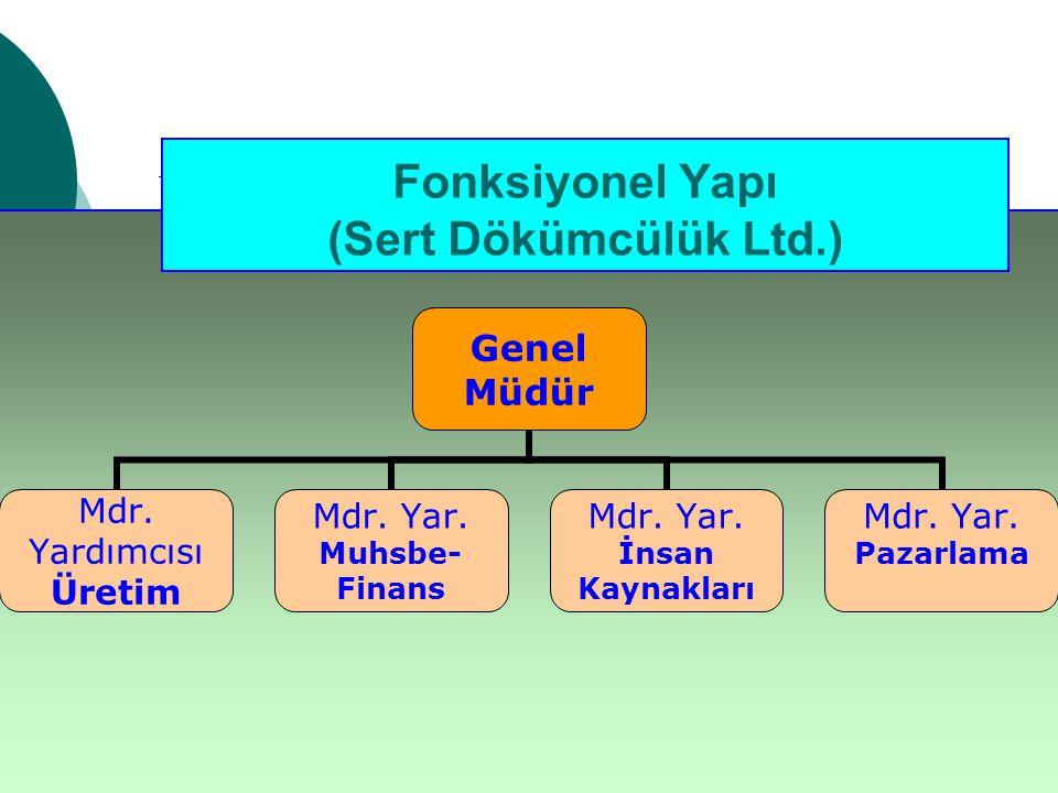 Fonksiyonel Yapı (Sert Dökümcülük Ltd.)