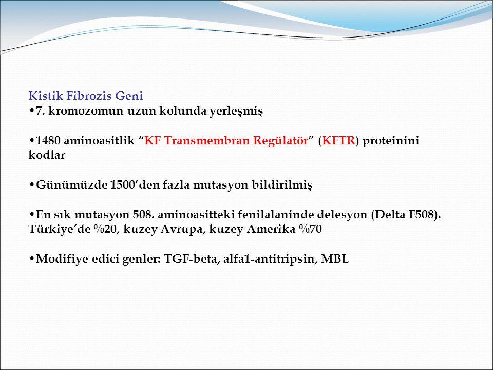 Kistik Fibrozis Geni 7. kromozomun uzun kolunda yerleşmiş. 1480 aminoasitlik KF Transmembran Regülatör (KFTR) proteinini kodlar.