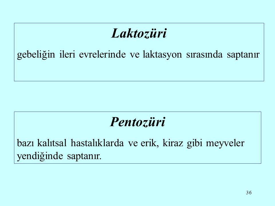 Laktozüri gebeliğin ileri evrelerinde ve laktasyon sırasında saptanır. Pentozüri.
