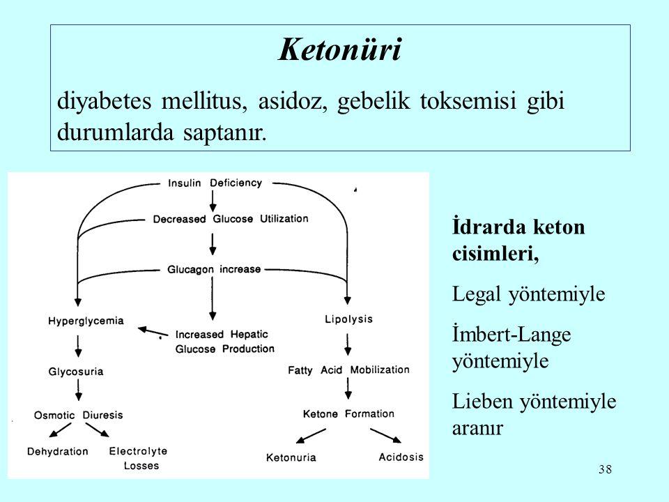 Ketonüri diyabetes mellitus, asidoz, gebelik toksemisi gibi durumlarda saptanır. İdrarda keton cisimleri,