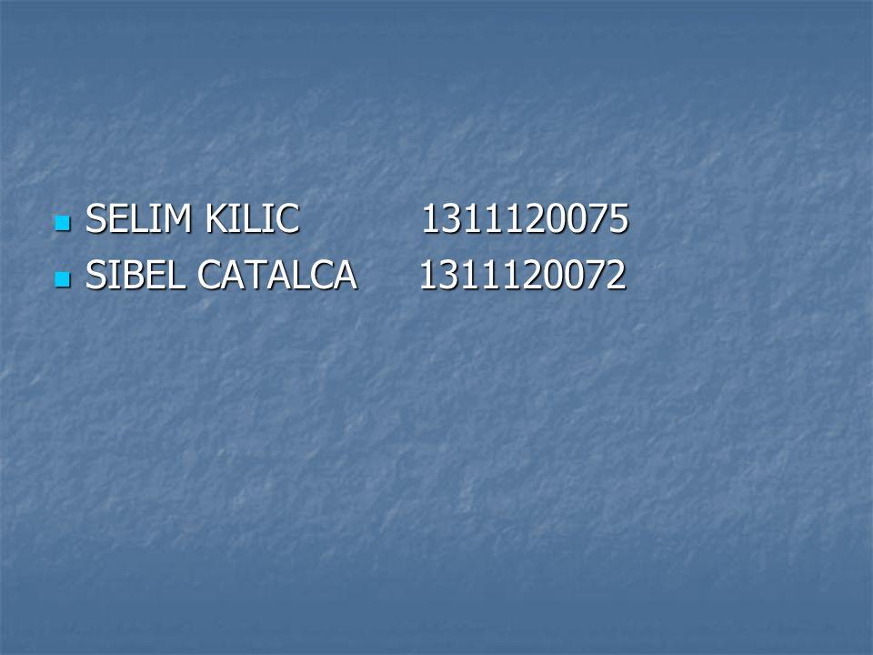 SELIM KILIC 1311120075 SIBEL CATALCA 1311120072